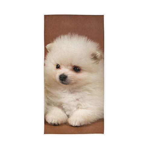 XiangHeFu Duschbad Handtuch Ultraweicher Mehrzweckschal Zwei Welpen des Spitz-Hundes Hochsaugfähig
