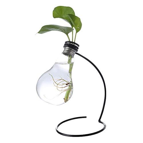 Asamio Retro Fashion Transparente Glühbirnenform Glas Blumenständer Wohnzimmer Dekoration