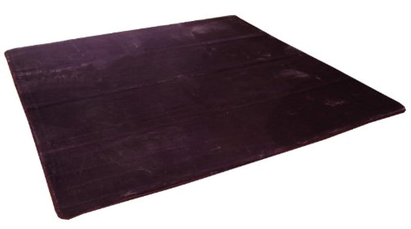 飛行機証明組イケヒコ ラグ カーペット 1.5畳 無地 扁平糸 『アネーロ』 パープル 約130×185cm(ホットカーペット対応)