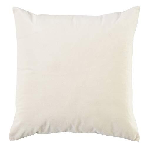 BlueCosto (1_Blanco Terciopelo Fundas de Cojines Funda de cojín para sofá Almohada Dormitorio Coche Suave Decoración 45 x 45 cm
