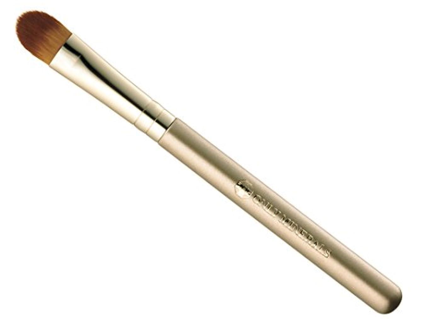 十分に引き算バイオリニストオンリーミネラル コンシーラー&ハイライトブラシ 12.5cm