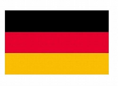 世界の 国旗 スポーツ 観戦 応援 各国 料理 日本 アメリカ イギリス フランス イタリア etc 90㎝×150㎝ (ドイツ)