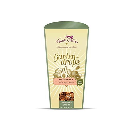 Terra Canis Obst & Kokosmehl - Gartendrops, 100g I Vegetarische Premium Kekse für Hunde in 100% Lebensmittelqualität Aller Rohstoffe I Getreidefrei & glutenfrei