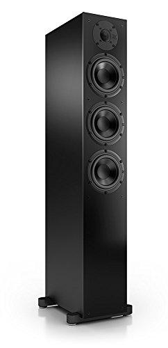 Nubert nuBox 513 Standlautsprecher | Lautsprecher für Stereo & Musikgenuss | Heimkino & HiFi Qualität auf hohem Niveau | Passive Standbox mit 2.5 Wege Technik | kompakte Standbox Schwarz | 1 Stück