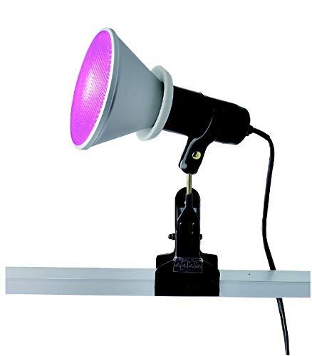トーメ クリップライト CH300PLANT 植物育成ランプ付 CH300PLANT