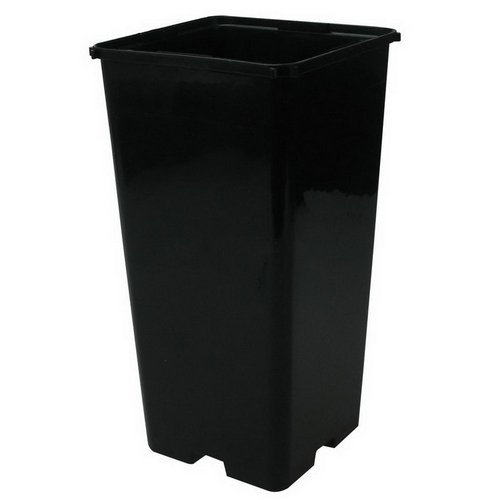 Maceta cuadrada negra de cultivo CEP - 14,5x14,5x22cm (3L)