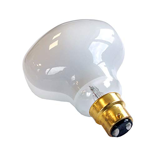 Testa Martello Colombo Spider - Bombilla LED con filamento (7 W = 75 W, B22, 900 lm, luz blanca cálida, 2700 K, regulable)