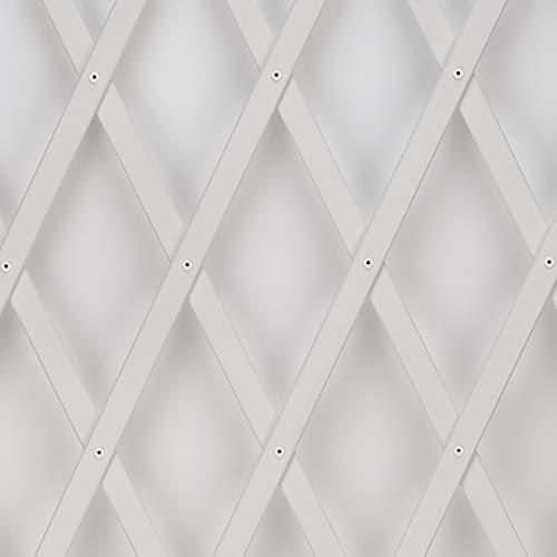 Treplas 1,00x2 m, Bianco, Traliccio Estensibile in PVC per Sostegno a Muro di Fiori e Piante Rampicanti