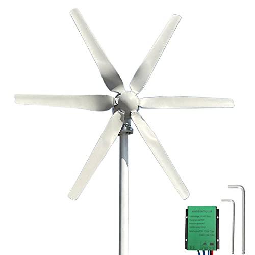 FLTXNY POWER Turbina eólica 800W 24V pequeños aerogeneradora de viento horizontales con controlador de carga PWM