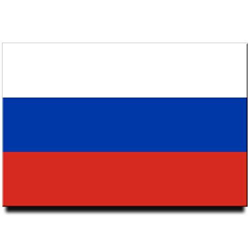 Kühlschrankmagnet mit Russland-Flagge, Moskau, Reise-Souvenir