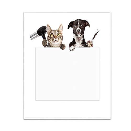 Stor filt vändbar för bäddsoffa, supermjuk komfort för alla årstider gåva sängöverkast 150 cm x 120 cm tvätt, skär och blåser katter och hundar