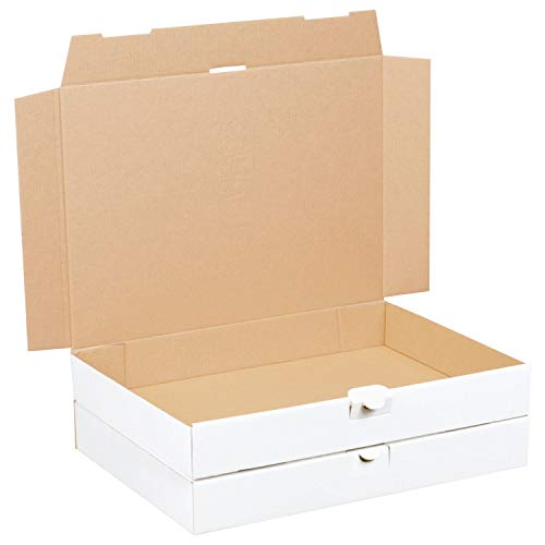 100 Maxibriefkartons 350 x 250 x 50 mm weiss (100 Stück) DIN A4+ Maxibrief Versandkarton für DHL DPD GLS Hermes Warensendung Büchersendung mit Steckverschluss