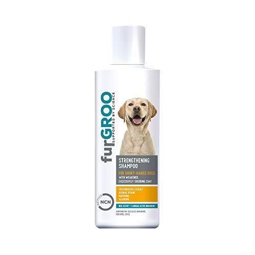Furgroo - Champú fortificante para perros con pelo corto quebradizo que mudan en exceso, enriquecido con NCN Active, 250 ml