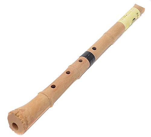【民族楽器コイズミ】尺八 樹脂製 1尺8寸管 key D (完全調律尺八 悠)