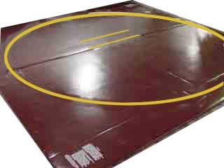 Wrestling Mat - Remnant, 10'x10' (Two 5'x10' Pieces), Mat:Turquoise, Markings:White, 1.25""