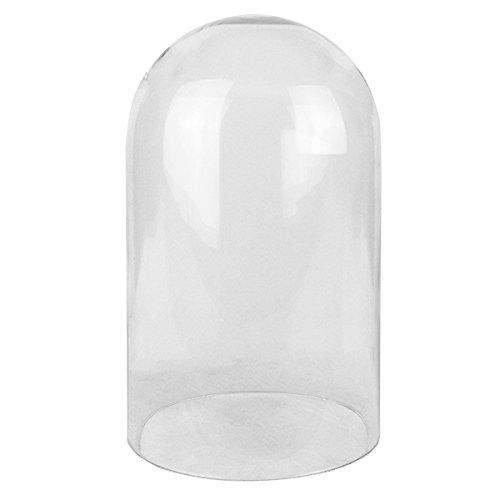 CYS EXCEL Glass Dome Decorative Display Case Showcase Piece, Cloche Bell Jar Terrarium, No Wood Base
