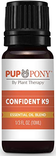 Plant Therapy Pup & Pony - Confident K9 Essential Oils Blend, Natural Aromatherapy for Dogs & Horses - Separation and Anxiety Support Blend - 100% Pure 10 mL (1/3 oz)