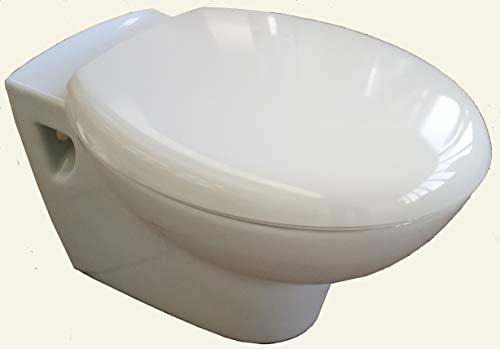 Cuvette suspendue vert egee Porcher 54,5x36 cm + siège de toilette inclus