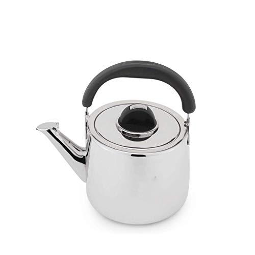 FGDSA Hervidor 4L Estufa de cerámica eléctrica de Gas de Acero Inoxidable...