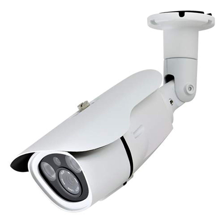 樫の木マインド我慢するダミーカメラ 赤外線照射機能付 ダミーカメラ