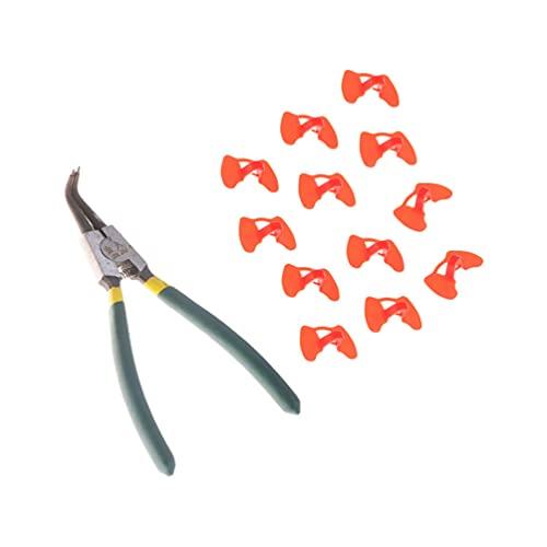 YARNOW 12 Piezas Pinless Peepers con Alicates Anti Picoteo Ojo Gafas Alicates Faisán Aves Peepers Herramienta para Mascotas