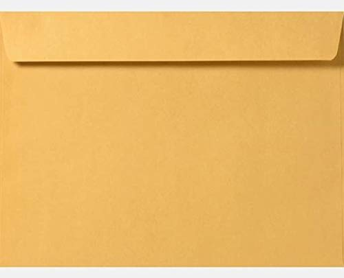 Limited Papers (TM) Booklet Envelopes, Brown Kraft, Gummed Seal, 28 Pound, Heavyweight, for Mailing and More. (500, 10 x 13)