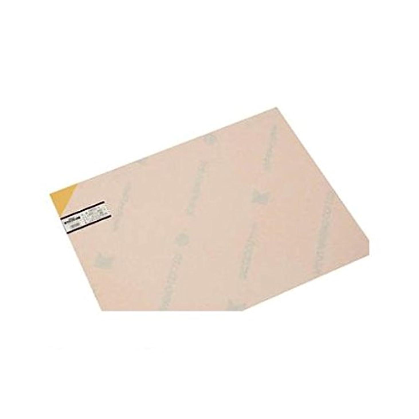 計画きれいに職業CR57578 エンビ板オレンジ透明