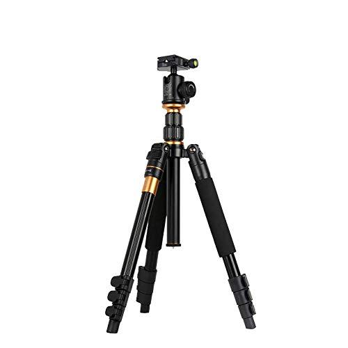 WMC Tragbares Fotostativ, Einbeinstativ und Kugel-Panoramakopf für Digitale Spiegelreflexkameras/Reise-Kompaktkameras