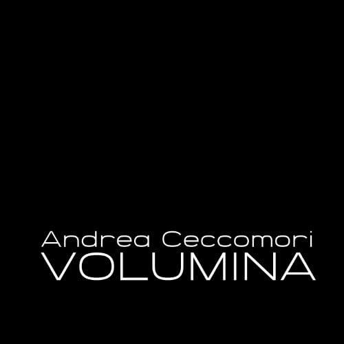 Andrea Ceccomori