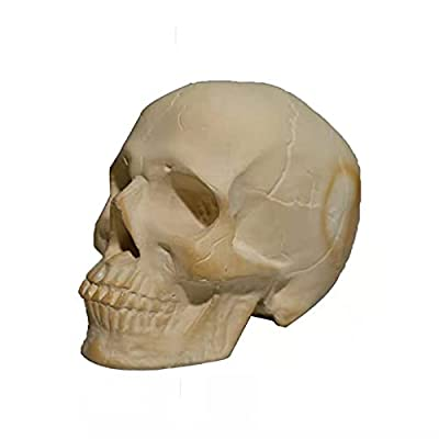 Ceramic Imitation Human Skull Fire Log,Interesting And Unique Ornament Decoration Skull On The Barbecue for Wood Fireplace Campfire,Halloween Home Fireplace Decor from Goldye