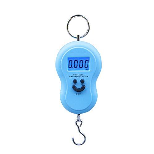Huilongxin 50KG Mini Digital Scale Fishing Luggage Travel Weighting Steelyard Hanging Electronic Hook Scale Kitchen Weight Tool