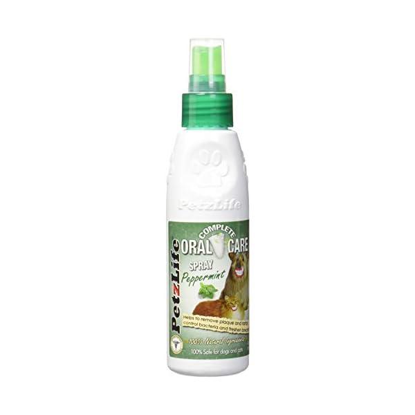 PetzLife Oral Care Peppermint Spray (4 oz)
