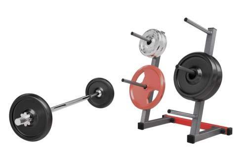 QLS - Supporto per bilanciere, 280 kg