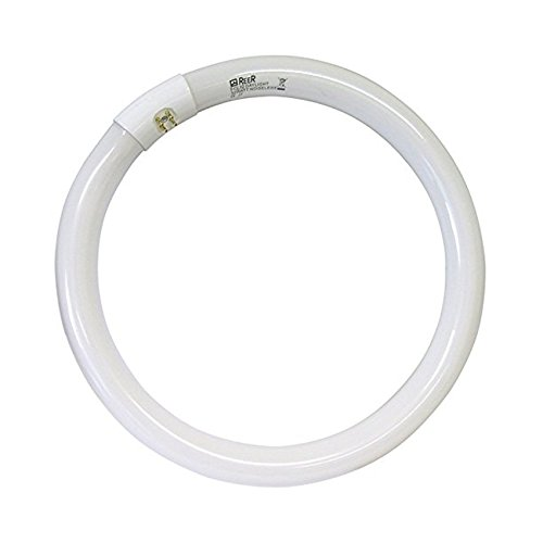 DIELLESHOPPING Lampada Neon Circolare G10Q 32 Watt Luce Bianca CIRCOLINA Risparmio ENERGETICO