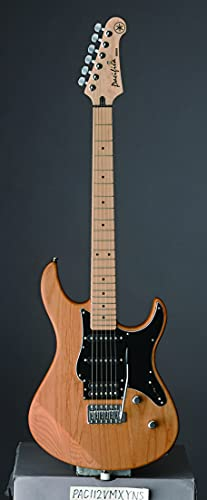 yamaha elektrische gitaar lidl