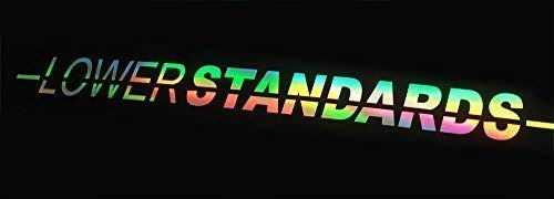 Lower Standards 60 cm Oil Slick Sticker Auto Porno Hologram Aufkleber Stance Static Dub
