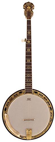 """Barnes Mullins BJ500M-Banjo & a 5 corde, in acero e""""di risonanza"""