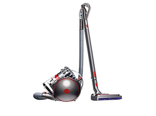 Dyson 228409-01 Cinetic Big Ball Animalpro 2 Grigio