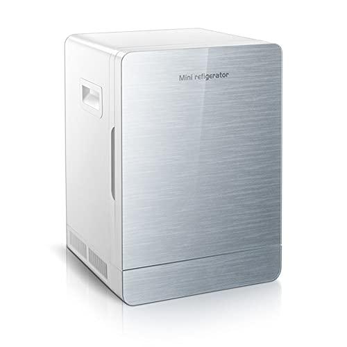 WUQIAO Mini refrigerador eléctrico para automóvil, hogar, Doble propósito, bajo Consumo, para Dormitorio de Estudiantes, Compacto, portátil y silencioso
