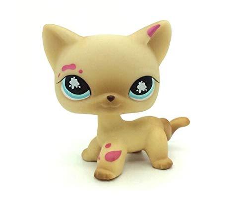 WooMax LPS Jouet Littest Pet Shop Messiest CR¨¨me Siamois Splash Chat Kitty Blue Eyes Collection Jouets pour Enfants d'anniversaire Cadeau De No?l