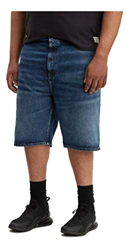 Levi's Men's 569 Loose Straight Denim Shorts, Garland-Stretch, 38