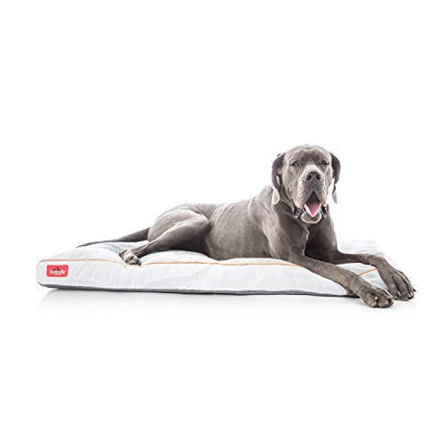 Brindle Shredded Memory Foam Dog Bed with Removable Washable Cover-Plush Orthopedic Pet Bed - 52 x 34 inches - Stone