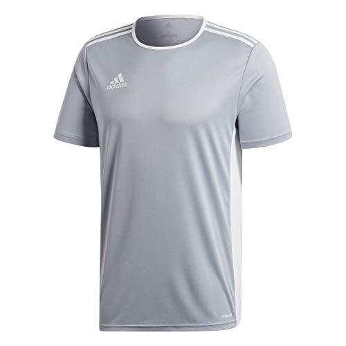 adidas Men's Entrada 18 AEROREADY Primegreen Regular Fit Soccer Short Sleeve Jersey, Light Grey/White, Medium
