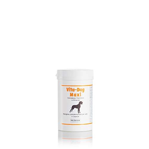 Vita-Dog Maxi, conf. 60 CPS - Complesso Vitaminico e Minerale - Mangime complementare (Integratore) per Cani di Taglia Grande - consigliato per integrare vitamine e sali minerali