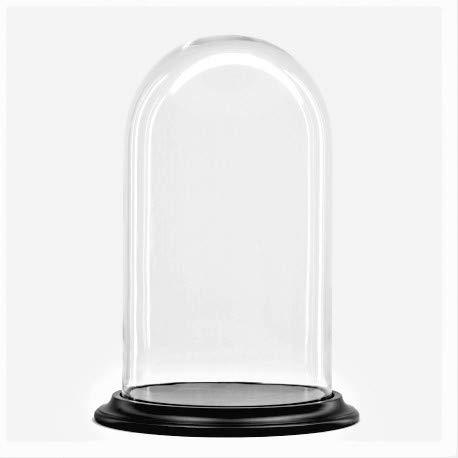 Cúpula de Vidrio/Campana de Cristal con Base de Madera Negra Ø 30...
