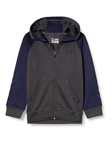Hummel Dziecięca bluza z kapturem Hmlaction Zip Hoodie Sweat Kids Hood wielokolorowa wielokolorowa 116