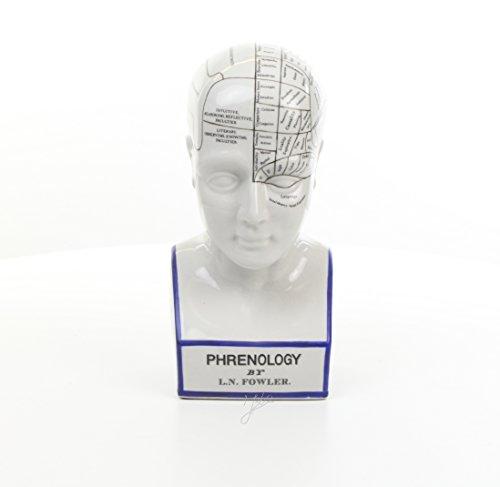 Decoratie Deko Kopf Kopfskulptur Büste Phrenologie Schädellehre Porzellan Höhe 30 cm 1,8 kg