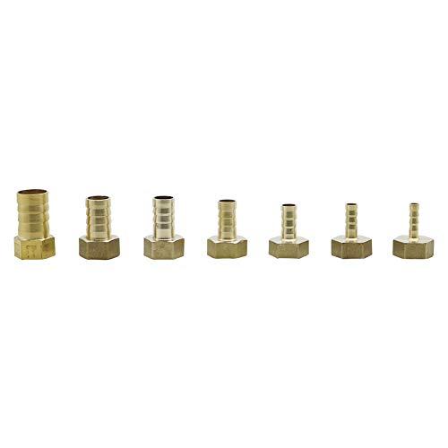 Adhere To Fly Lot de 10 adaptateurs de tuyaux Droits en Laiton 6-19 mm à 1/2'' 6mm Innengewinde