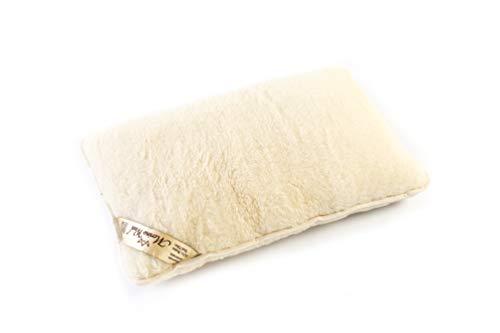 1x 100% Merino lana almohada 45 x 75 cm lana WOOLMARKED. Estándar almohada. Producto natural. Ideal para regalo. 1x WOOL PILLOW