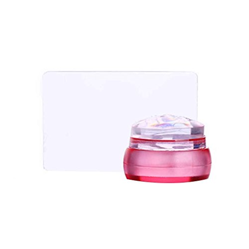 Deinbe Effacer Echecs 3.5CM Silicone Head Nail Stamper avec Red Scraper Light Blue Rose Jelly Nail Stamping Seal
